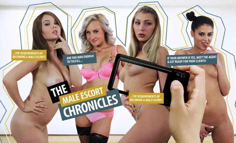 The Male Escort Chronicles 2 by Lifeselector