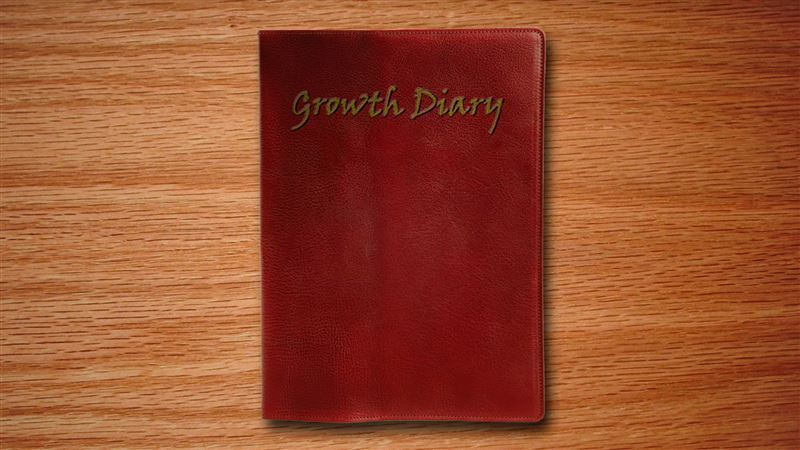 AlexGTS – Growth Diary – Complete