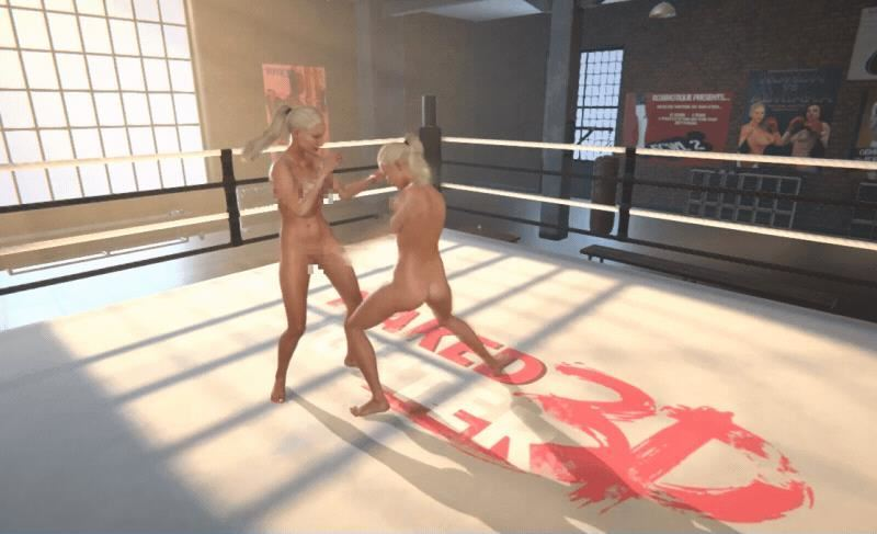 Naked Fighter 3D Version 0.05 Pro by Sam3DX